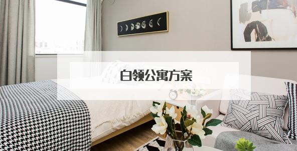 白领公寓方案设计