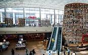 上海崇明区单位图书阅览室效果图