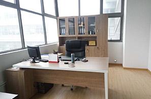 生物科技公司主管办公桌与文件柜的定制与摆放