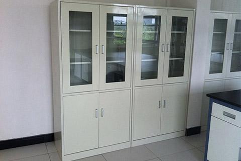 药品柜 实验室柜 实验室柜子 SYS151207
